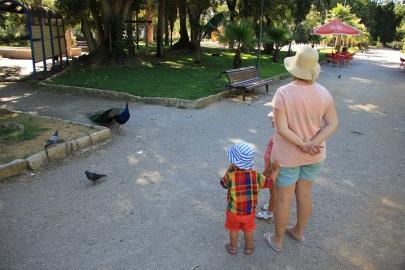 Un parc dans Faro