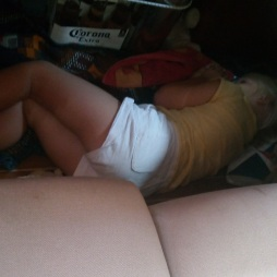 Dodo sous la table du carré