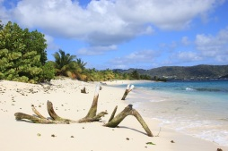 carriacou (3)