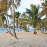 Tobago cays (11)