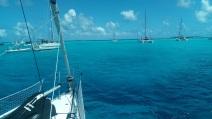 Tobago cays (16)