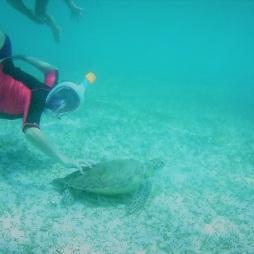 Tobago cays (3)